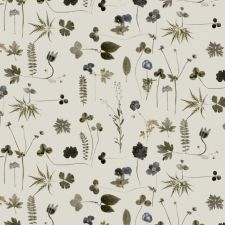 Botanica 3660 Wallpaper in 'Multi'