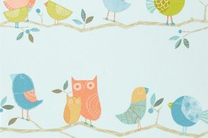 What A Hoot 70516 'Tangerine/Coffee/Aqua/Sky Blue'