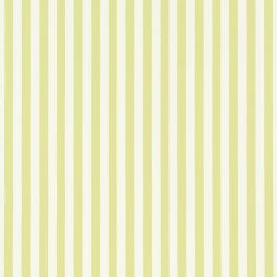 Harlequin Mimi Checks & Stripes Mimi Stripe In Lime