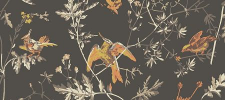 Hummingbirds 112/4017 'Charcoal & Ginger'