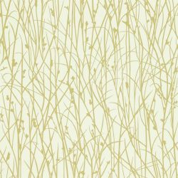 Grasses from the 'Kallianthi' Wallpaper Collection in Ecru/Celery
