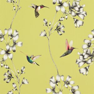 Harlequin Wallpaper Amazilia 111061 Gooseberry